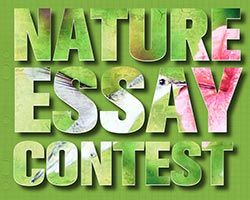 Nature essay logo